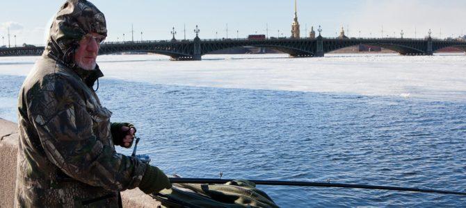 Какая рыба встречается в Неве?